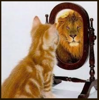 lion-in-mirror